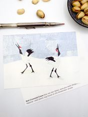 Kaart Red Crowned Cranes van Pou-Belle Design